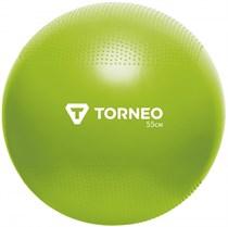 Мяч гимнастический с насосом 55 см Torneo A-208