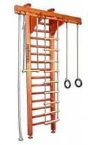 Деревянная шведская стенка Kampfer Wooden Ladder Ceiling